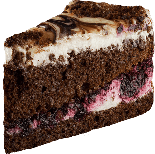 cake-matrix-with-black-currant