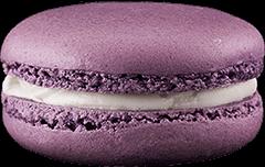 macaron-viole